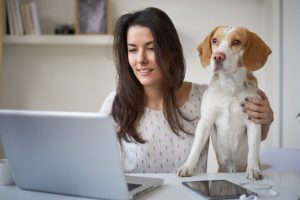 female consultant solicitor working from home with her dog